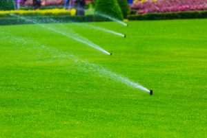 lawn irrigation services st petersburg
